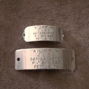 Stainless Rivet-on Collar Tag