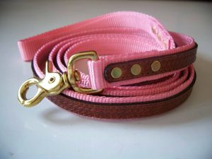 "The Cooper Leash Pink 3/4""x 6'"