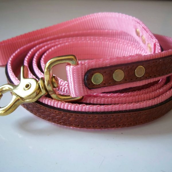 """The Cooper Leash Pink 3/4""""x 6'"""