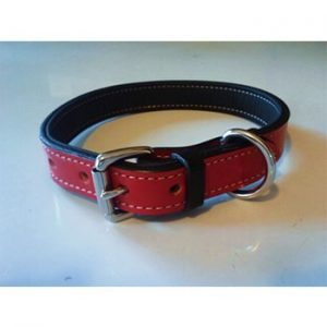 "The ""New"" Simply Red Collar"