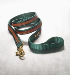 "The Cooper Leash Green 3/4"" x 6'"