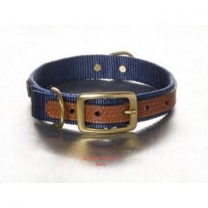 The Cooper Collar - Blue