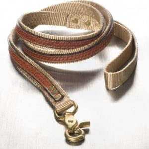 "The Cooper Leash Beige 3/4"" x 6'"