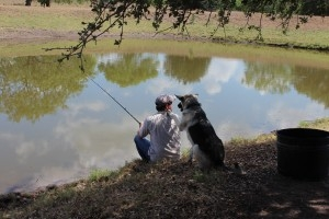 dog with owner fishing