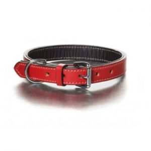 The Simply Red Collar
