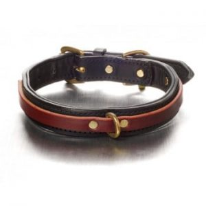 The Tucker Collar - Burgundy on Black