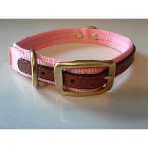 The Cooper Collar-Pink