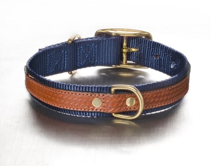 The Cooper Collar - Blue